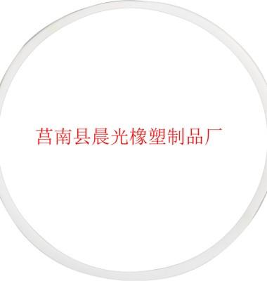 密封垫片图片/密封垫片样板图 (3)