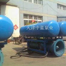供应用于高山提水的浮筒式高山提水泵