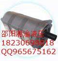 CBJ26-G6.3重庆齿轮油泵CBJ25-F12/图片