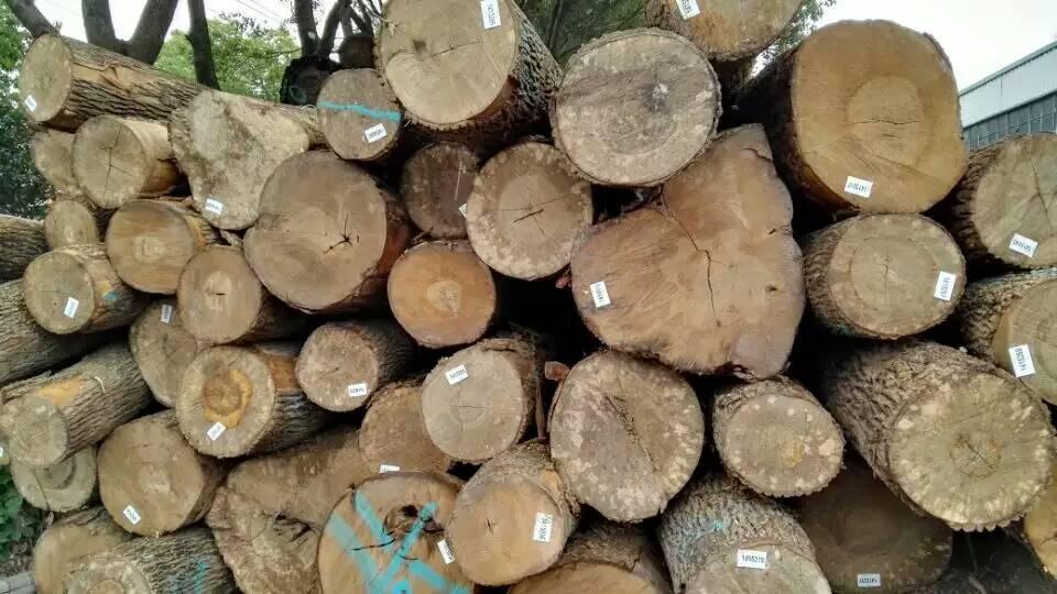 新西兰松木原木厂家