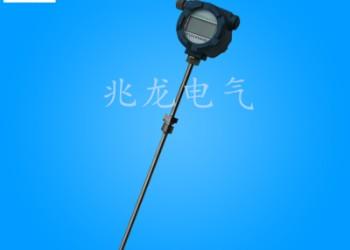 WRN-231装配式热电偶K型图片