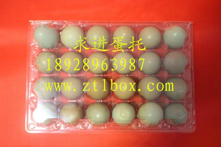 24枚蛋托价格 24枚蛋托批发 24枚蛋托厂家 24枚蛋托供应