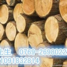 代理刚果铁木进口报关图片
