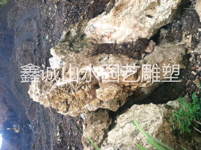吸水石供应公司图片/吸水石供应公司样板图 (2)