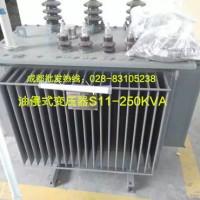 供应用于巴中市变压的油浸式高压变压器