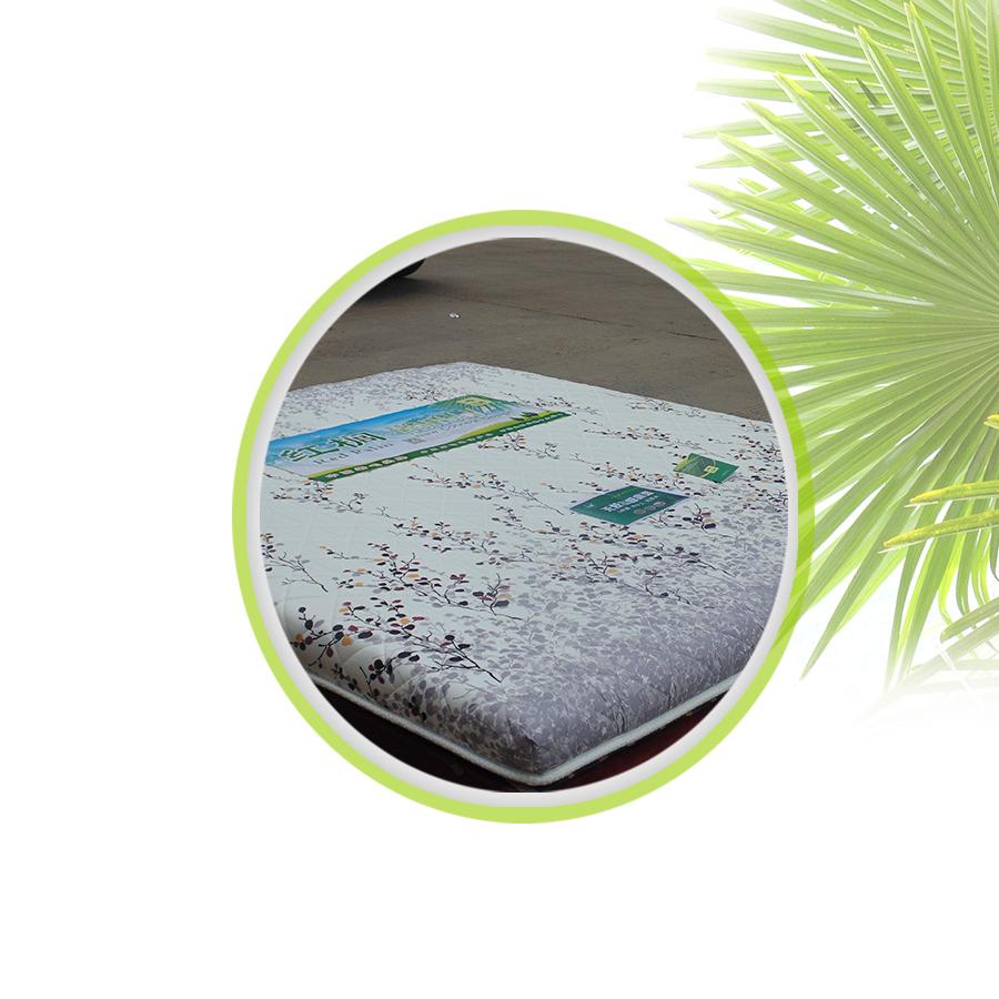 厂家直销 无胶山棕系列床垫片丝8厘米厚 质量保证