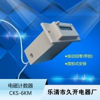 CSK6-YKW电磁计数器6位