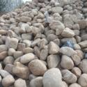 河南河卵石水冲石图片图片