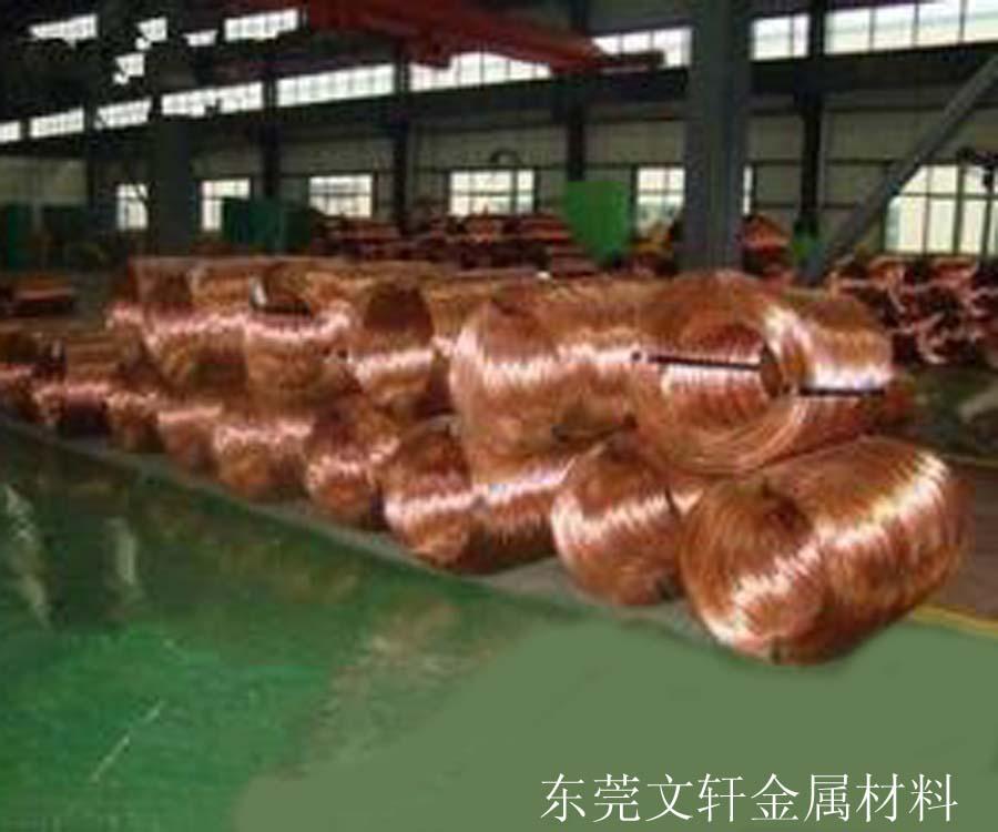 供应用于铆钉铆料的东莞红铜线厂家 环保红铜线供应 黄铜扁线加工销售