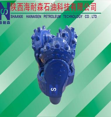 石油钻井硬质合金PDC钻头图片/石油钻井硬质合金PDC钻头样板图 (4)