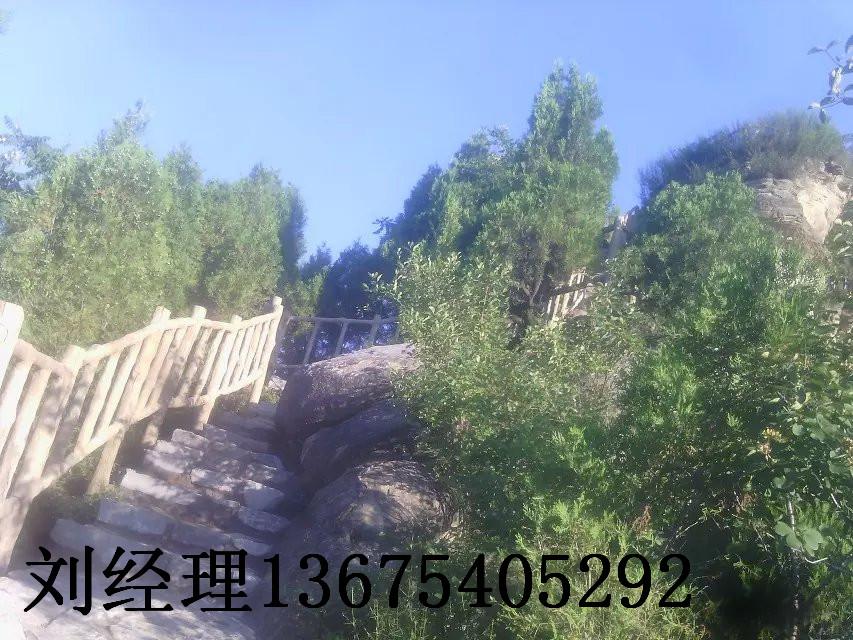 供应忻州有做水泥护栏的吗,忻州有做水泥护栏的图片,忻州有做水泥护栏的价格
