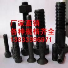 供应用于螺丝的穿墙螺栓M42*170 带孔螺栓批发厂家 普通螺栓批发
