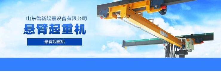 供应用于装卸的LX型电动单梁悬挂桥式起重机|单梁悬挂起重机价格|单梁悬挂桥式起重机购买