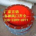 广州圆风门DN800图片