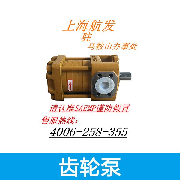 齿轮泵图片/齿轮泵样板图 (3)