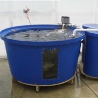 供应鱼菜共生水产养殖桶、鱼菜共生介绍、水产养殖桶、鱼菜共生原理图、鱼菜共生的图片、