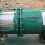 套筒式补偿器DN250PN1.6图片