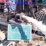 供应专业钻井技术地质勘测技术广东地质勘探工程