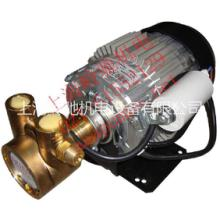 供应进口电容外置旋转叶片泵 水泵油泵图片