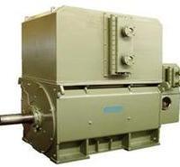 电动机   高压三相异步电动机  Y、YKK、YKS电动机 Y、YKK、YKS 批发厂家