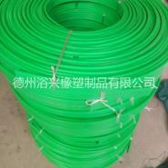 上海高分子输送机械护条生产厂家图片