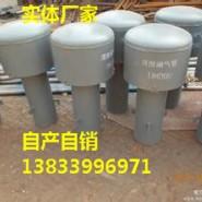 罩型通气管DN300图片