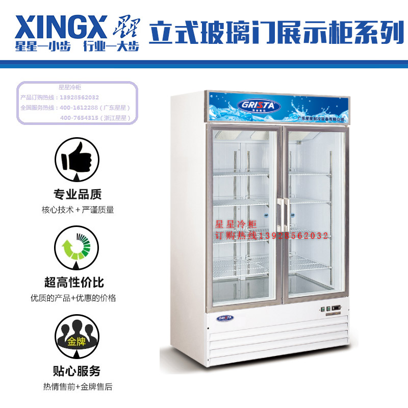 佛山星星冷柜批发立式玻璃门展示柜系列 铝合金边框低温展示柜