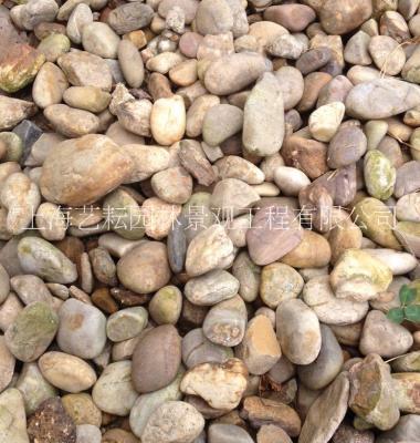 上海过滤鹅卵石'鹅卵石图片/上海过滤鹅卵石'鹅卵石样板图 (1)