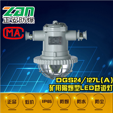 正安防爆DGS24-36/127L(B矿用隔爆LED巷道灯 照明灯 荧光灯 矿灯