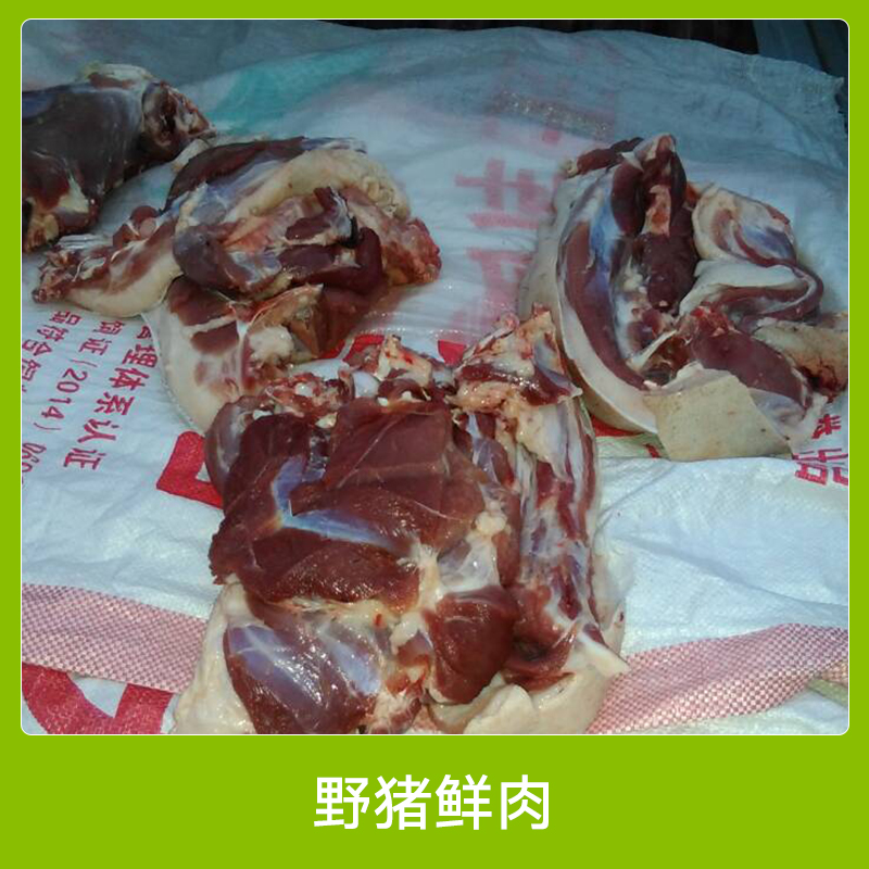 生鲜野猪肉 原生态养殖野猪鲜肉 新鲜野味特种野猪鲜肉 安徽野猪肉