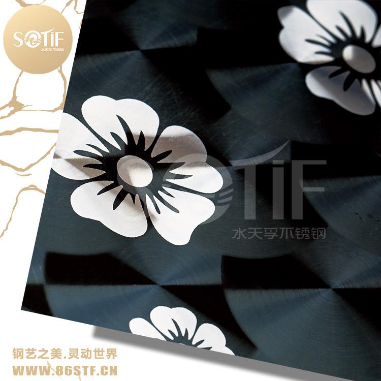 厂家供应,304不锈钢水仙花黑钛退钛镭射板,星级会所幕墙装饰板