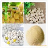 白果提取物_白果根粉厂家|白果浓缩粉价格