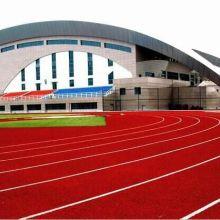 PU聚氨酯跑道系列  体育地坪类图片
