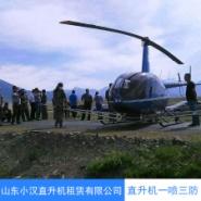 海南直升机一喷三防图片