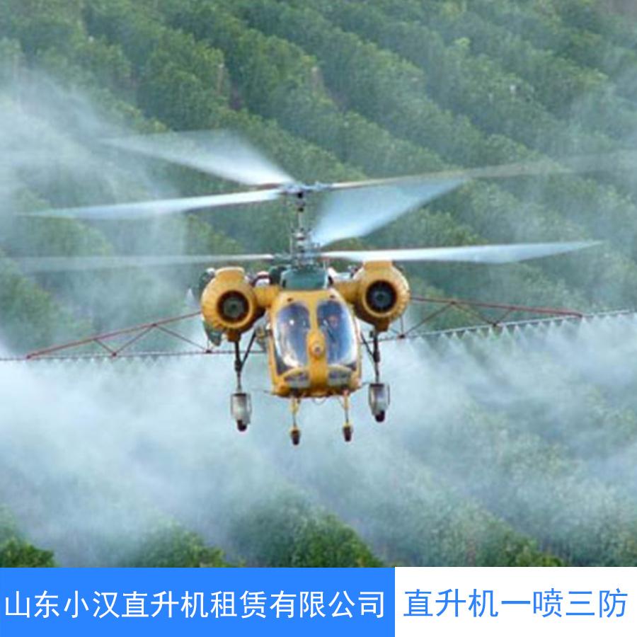 直升机一喷三防直升机航空护林 直升机护林灭火 直升机森林灭火