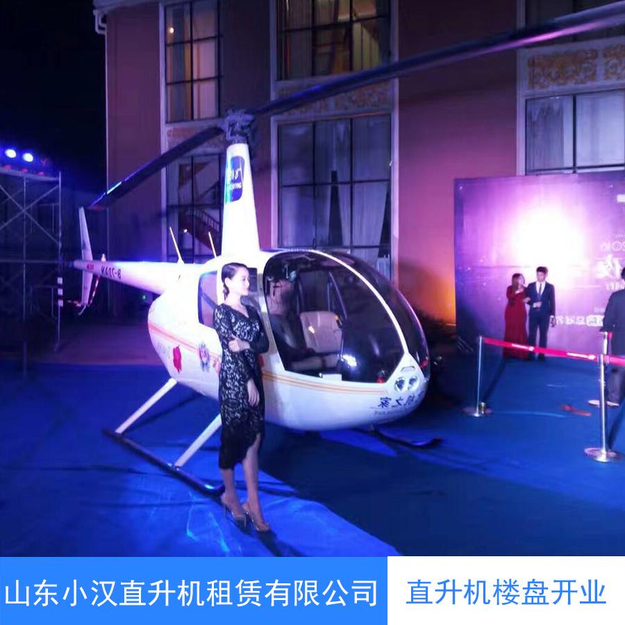 西藏直升机航拍航测 物探巡线