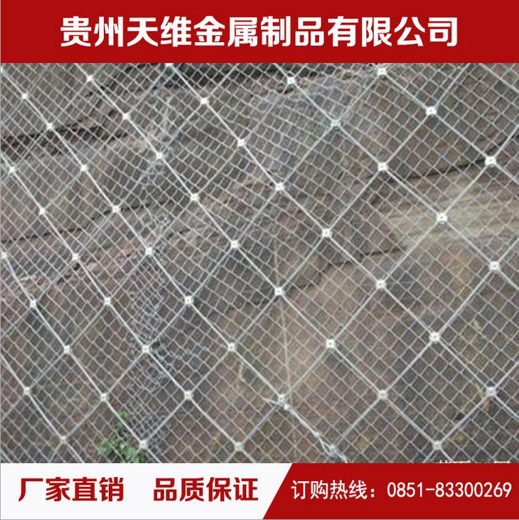 主动型钢丝绳网 柔性边坡防护网 边坡绿化网 贵州边坡绿化网