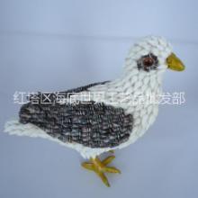 创意海螺动物白鸽 信鸽子批发