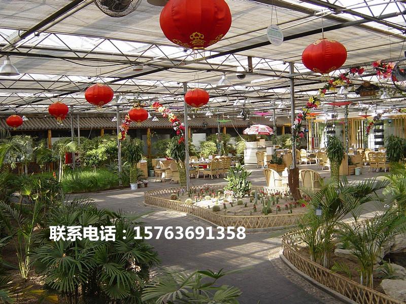 生态餐厅阳光板温室 生态餐厅蔬菜温室大棚 阳光板温室大棚建造价格