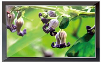 天津32寸液晶监视器厂家直销
