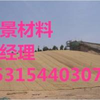塑筋水保抗冲椰毯塑筋椰毯厂家直供15315440307陈总