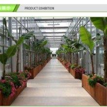 鑫凯花卉温室  免费安装 质保15年 分期付款 完工付款