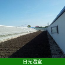 日光温室温室钢管大棚保温好投资低节约能源价格实惠 安徽日光温室批发