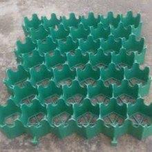 广州杰袖植草格 番禺塑料植草格规格 黄埔绿化植草格价格