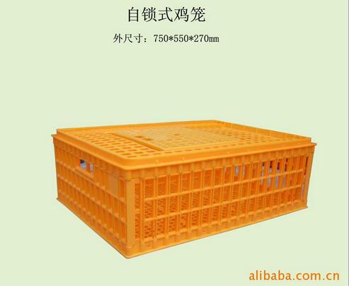 厂商直供自锁式鸡笼 方形鸡笼