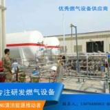 供应LNG气化减压站,气化撬 LNG气化撬,煤改气设备