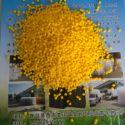pvc软颗粒 塑料粒子图片