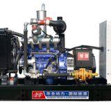 扬动10kw燃气发电机组