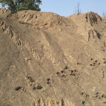 珠海大量现货建筑沙子 珠海河沙、海沙供应商 珠海建筑沙石供应