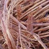 惠州废铜回收公司 惠州废铜回收价格 惠州废铜回收联系电话 惠州高价回收废铜、废铁、不锈钢